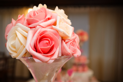 images/gallery_pasticceria/sweet_table_078.png